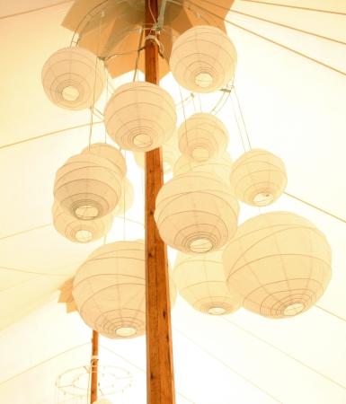 Blossom farm lighting on pinterest pendant lights pendant lamps and paper lantern chandelier - Paper lantern chandelier ...