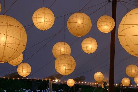 lanternscloseup.jpg