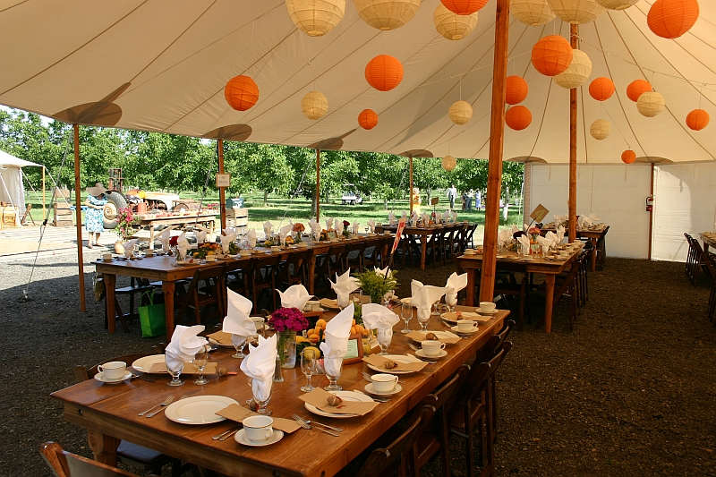 farm-tables-in-tent