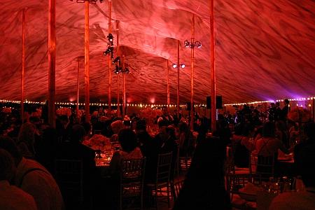 menlo circus club canopy wash