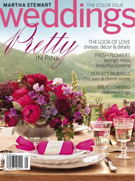 msw spring 2010 cover