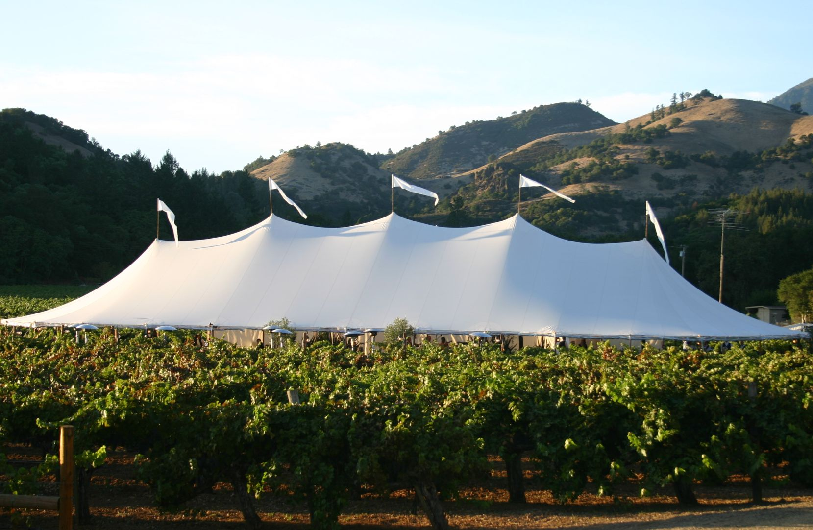 46 x 125 sperry tent calistoga wine country wedding